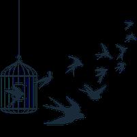Imagem representando o domínio libertador.com.br