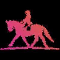 Imagem representando o domínio equestres.com.br