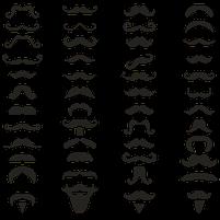 Imagem representando o domínio bigodes.com.br